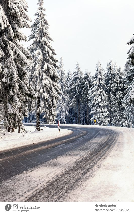 road conditions Vacation & Travel Trip Winter Christmas & Advent New Year's Eve Nature Landscape Sky Weather Ice Frost Snow Snowfall Tree Forest Transport