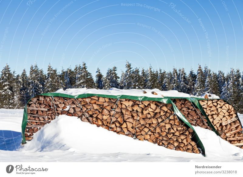 Wood in front of the hut Trip Winter Energy industry Renewable energy Nature Landscape Cloudless sky Sun Climate Weather Beautiful weather Ice Frost Snow Forest