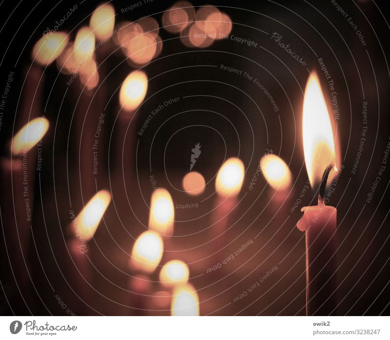 Calm Religion and faith Together Illuminate Church Idyll Eternity Candle Hope Grief Many Belief Serene Concern Dome Flame
