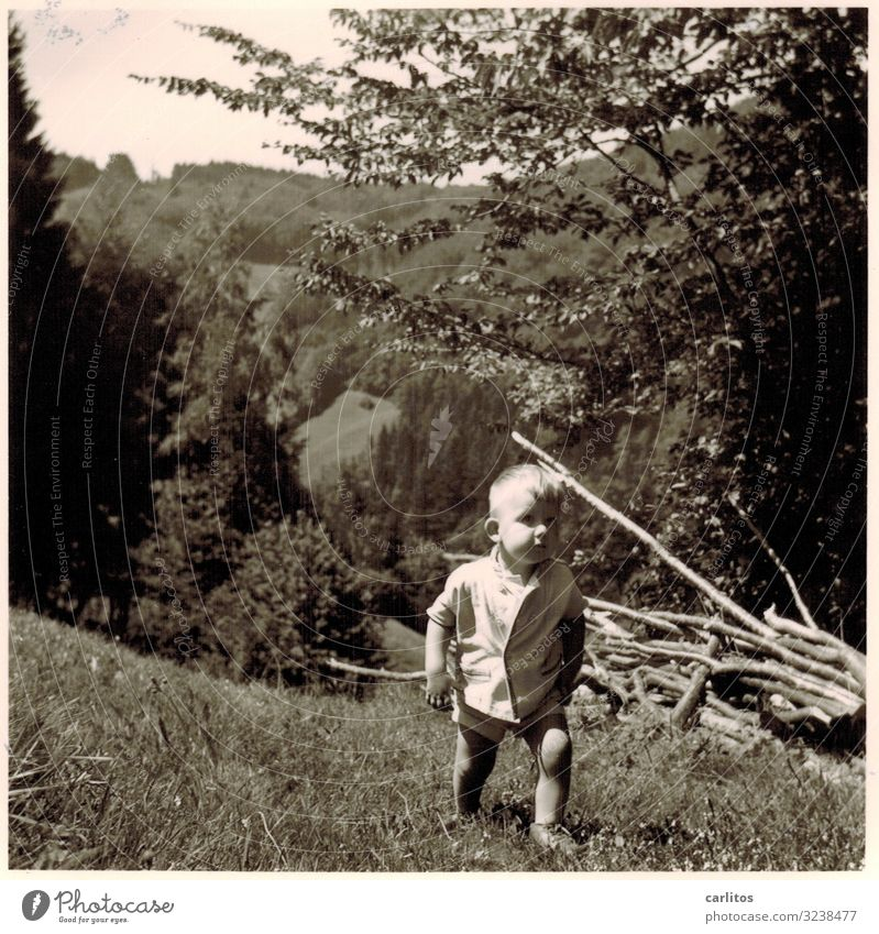 To the mountains in the morning ... The fifties Child Boy (child) Hiking Trip Black Forest Family & Relations Together