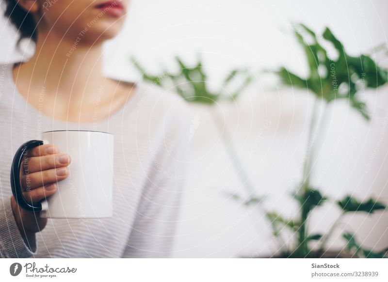 Hand holding coffee cup Woman Plant Green White Relaxation Leaf Winter Lifestyle Adults Warmth Weather Coffee Soft Seasons Hot