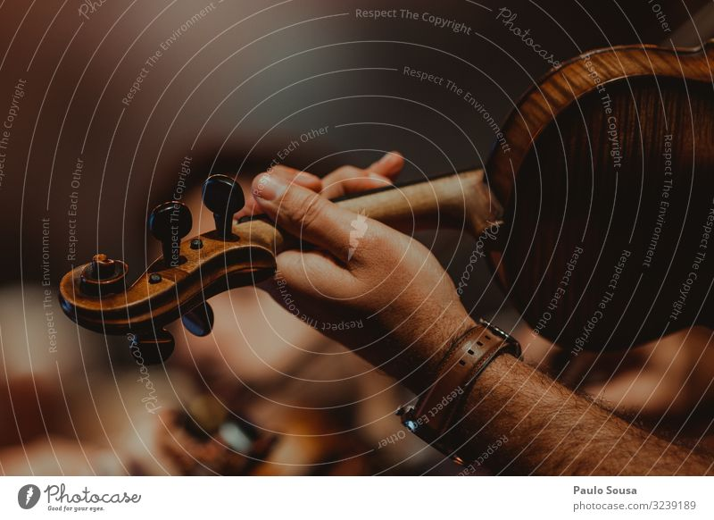 Closeup of man playing violin Lifestyle Masculine Hand 1 Human being Artist Music Musician Orchestra To enjoy Listening Communicate Listen to music Dream