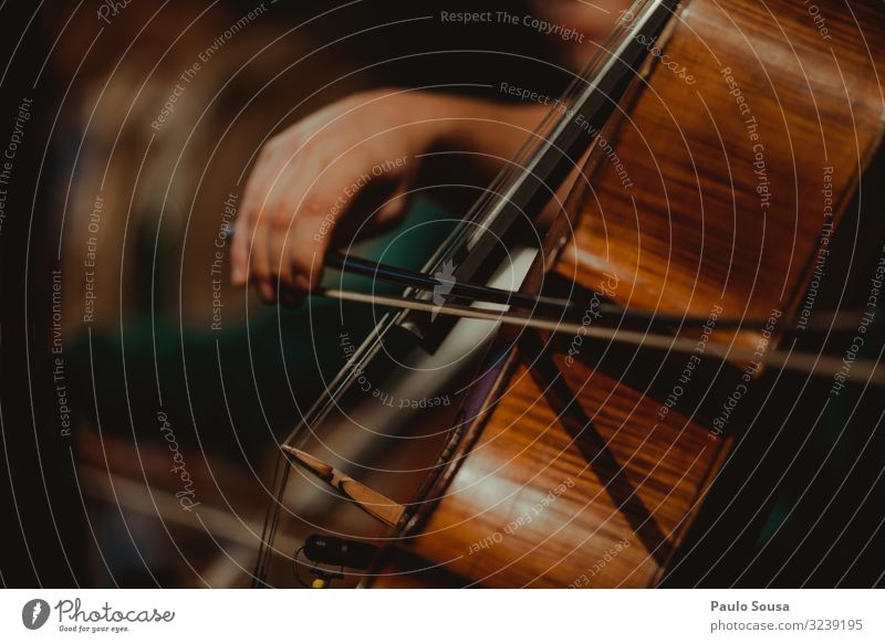 Close up hand playing cello Cello Music Musical instrument Musician Musical instrument string String instrument Concert Wood Tone Make music Colour photo Sound