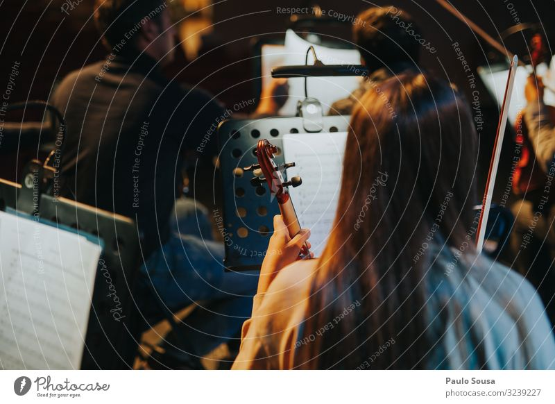 Rear View Of Woman Holding Violin Violinist Orchestra Stage Music Musical instrument Musician Concert Colour photo Close-up String instrument Interior shot