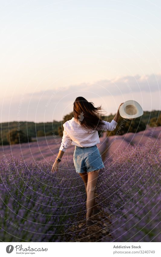 Anonymous woman walking in lavender field summer nature bush flower stylish casual female slim hat daytime flora plant growth vegetation relax rest lady trendy