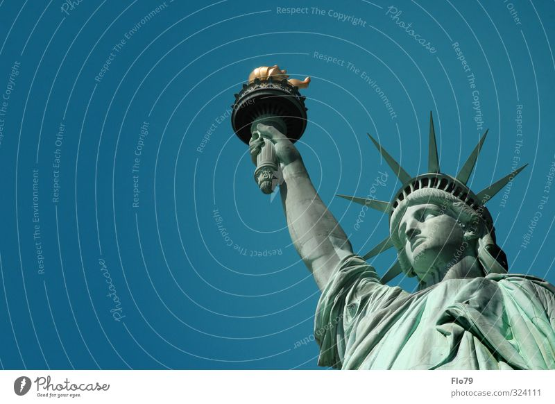 Liberty Art Sculpture Culture Sky Cloudless sky Spring Summer Beautiful weather New York USA America Town Tourist Attraction Monument Statue of Liberty Old