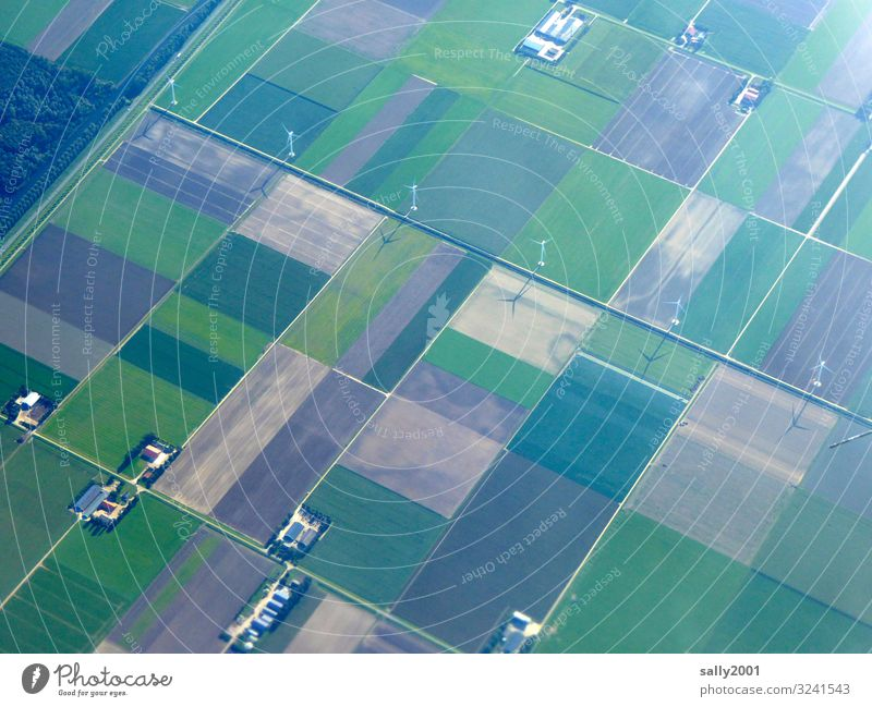 perfectly arranged... Agriculture Field Classification Farm rectangular neat land consolidation wind power Pinwheel Bird's-eye view Direct parcel Ground acre