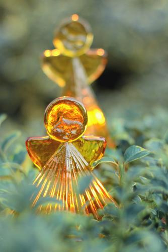 Glass angel Nature Winter Bushes Leaf Box tree Garden Angel Yellow Gold Green Orange Christmas & Advent Illuminate Decoration Ambience Candlelight Beech