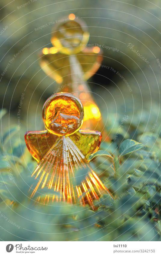 Nature Christmas & Advent Green Leaf Winter Yellow Garden Orange Decoration Illuminate Gold Glass Bushes Angel Candlelight