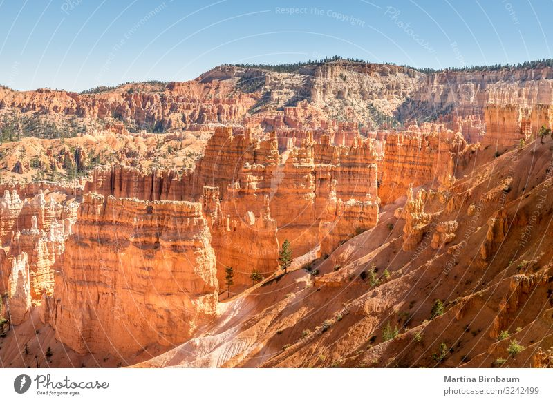 Majestic hoodoos in the Bryce Canyon, Utah Vacation & Travel Mountain Nature Landscape Sky Park Rock Monument Stone Gold Red Serene Amphitheatre national bryce