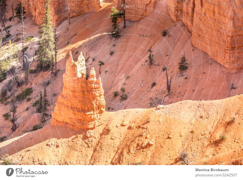 Like a chapel, hoodoo in the Bryce Canyon Utah Vacation & Travel Mountain Nature Landscape Sky Park Rock Monument Stone Gold Red Serene Amphitheatre national