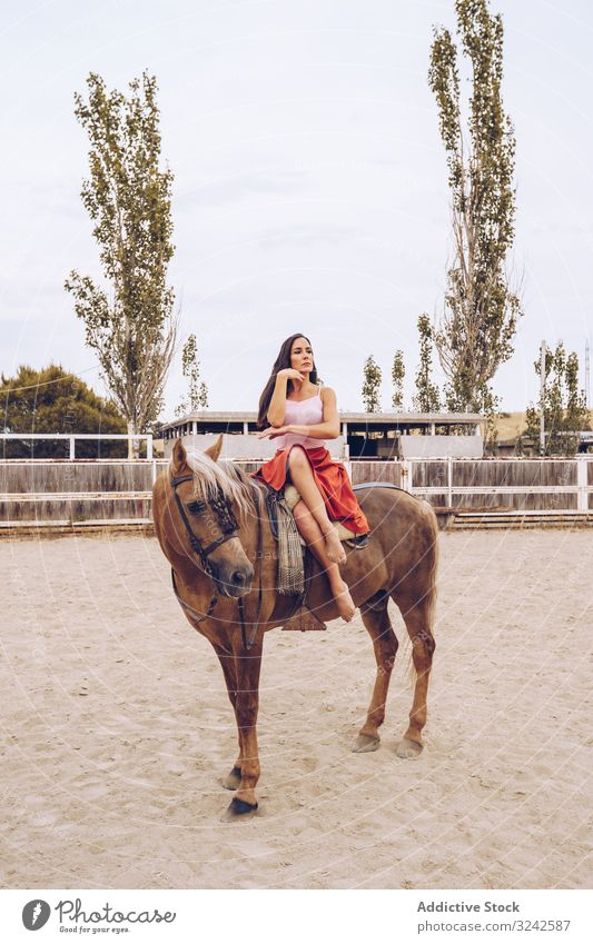 Graceful rider sitting at harnessed horse walking along paddock graceful carefree fancy woman beautiful barefoot dancer hippodrome young adult healthy