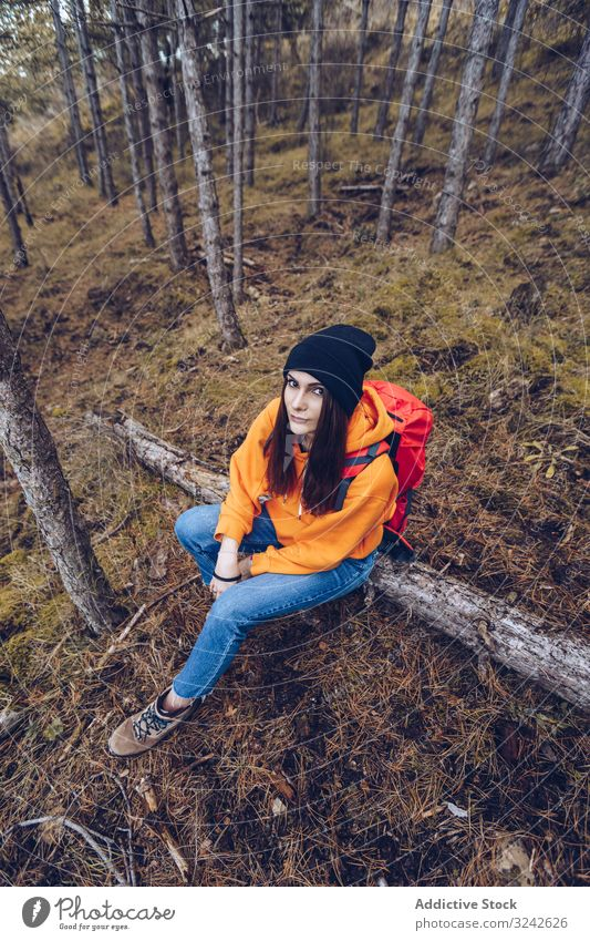 Female hiker sitting on fallen tree in autumn forest balance log woman woods relaxing stretched arms relaxed evergreen young adult grass greenery nature travel