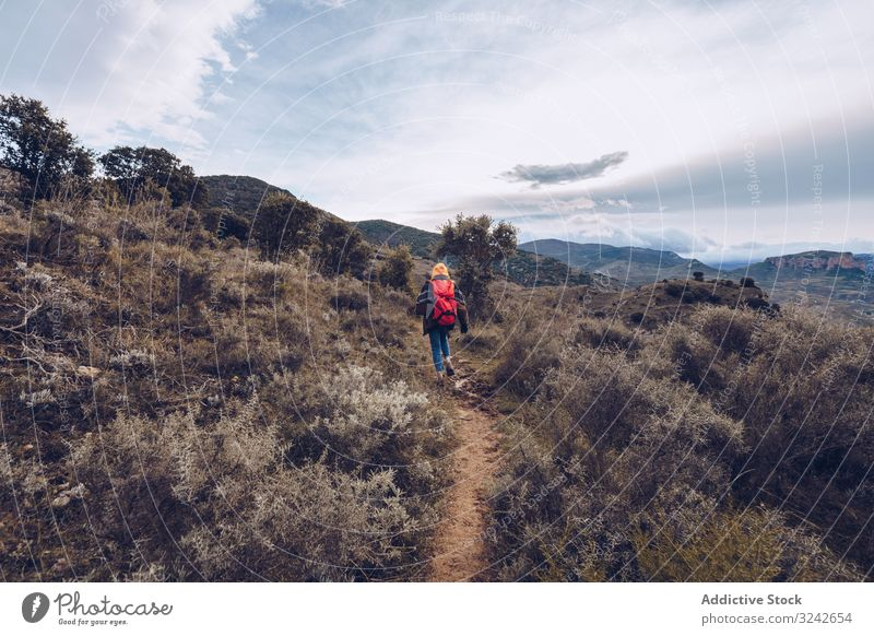 Hiker with backpack walking along pathway in autumn forest hiker person road dried leafless tree fall bare cloudy nature hiking travel adventure vacation