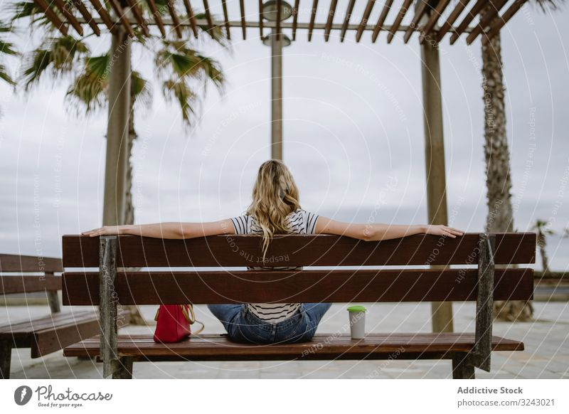 Anonymous woman with disposable cup of coffee sitting on street bench anonymous city seafront casual rest young female beautiful drink leisure attractive modern