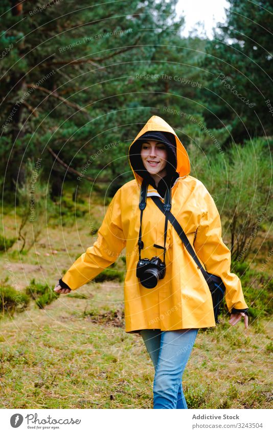 Person in hood and yellow raincoat walking i forest person nature wet park casual weather waterproof pine forest botanical tree hidden active vacation woods