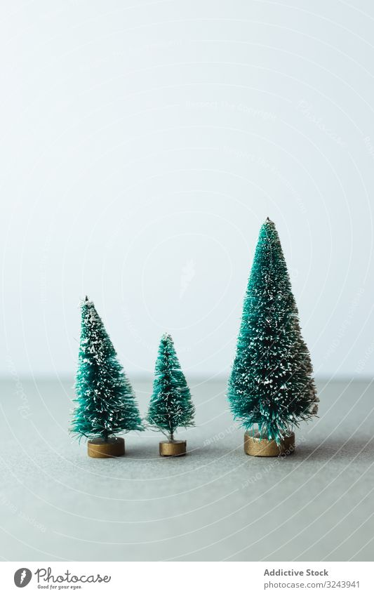 Small artificial Christmas trees on wooden stand christmas green holiday decoration composition celebration fluffy winter xmas row december festive