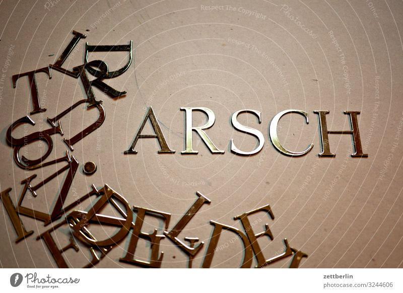 ARSCH Latin alphabet antiqua Letters (alphabet) single letter Classicism Text Characters Document Typesetter Typography Capital letter Word Cuss word Affront