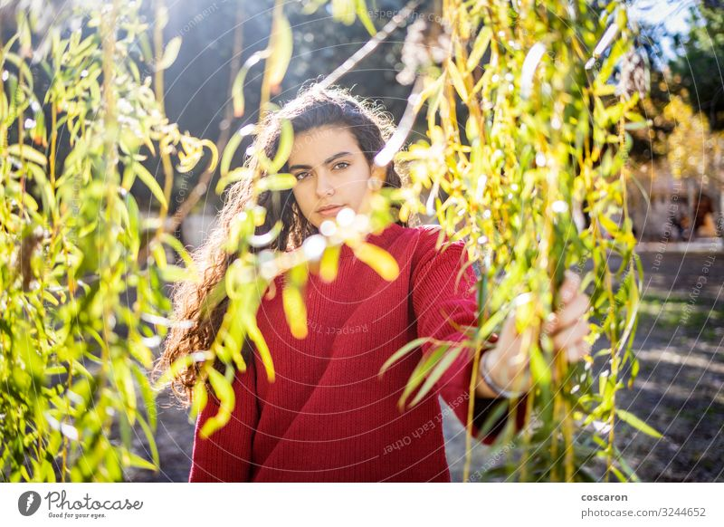 Portrait of a young woman with a red sweater Woman Human being Nature Youth (Young adults) Young woman Plant Beautiful Green Red Tree Relaxation Loneliness Leaf