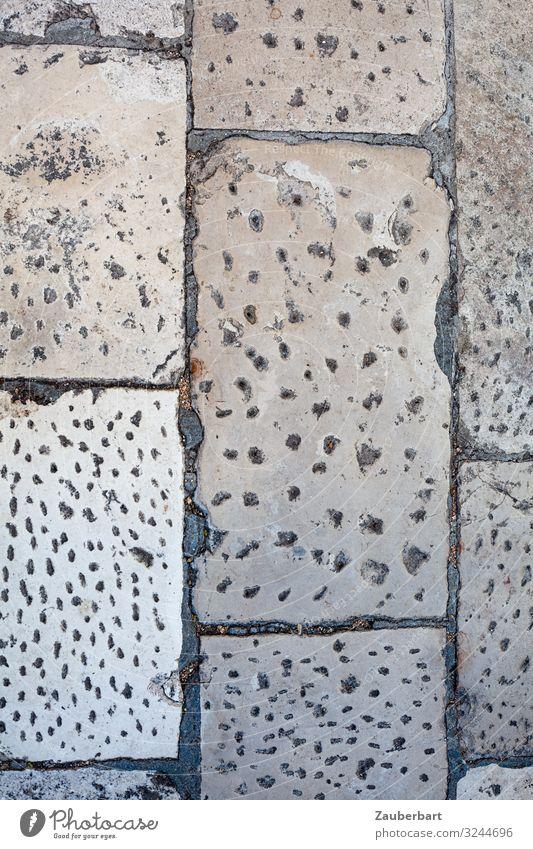 Paving stones in Zadar, Croatia Street Sidewalk Cobbled pathway Stone Going Looking Sharp-edged Historic Gray Disciplined Endurance Orderliness Arrangement