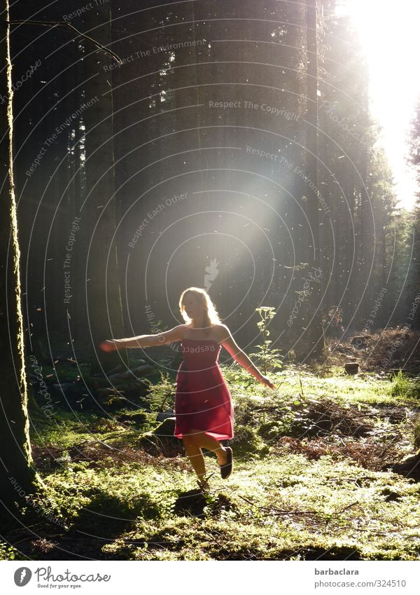 Human being Woman Nature Colour Summer Red Joy Forest Adults Dark Environment Feminine Emotions Movement Freedom Bright