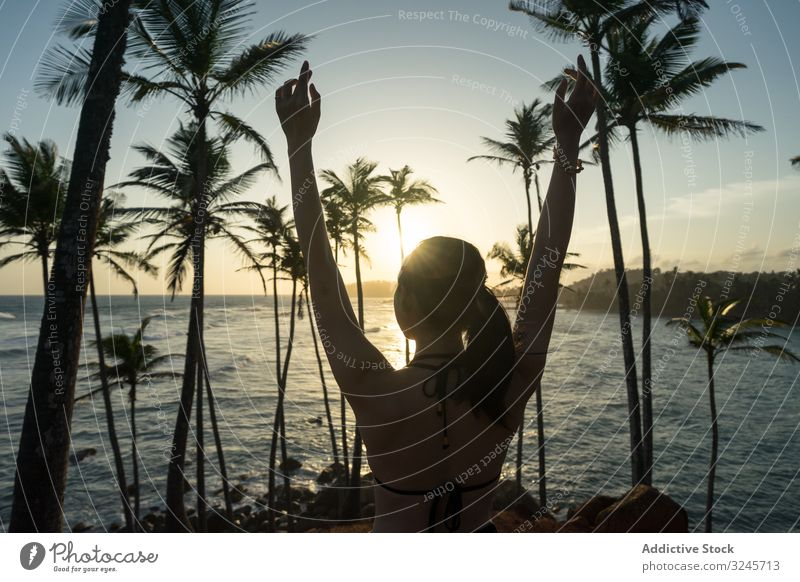 Tranquil female traveler among palms at seashore woman tourism summer vacation tree beach seaside ocean relaxation nature enjoy rest holiday lifestyle sunny
