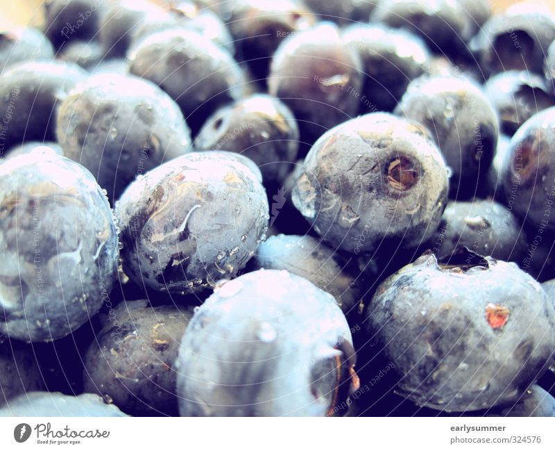 Blue Water Summer Healthy Eating Healthy Eating Garden Food Rain Fruit Wet Nutrition Sweet Cleaning Violet Harvest