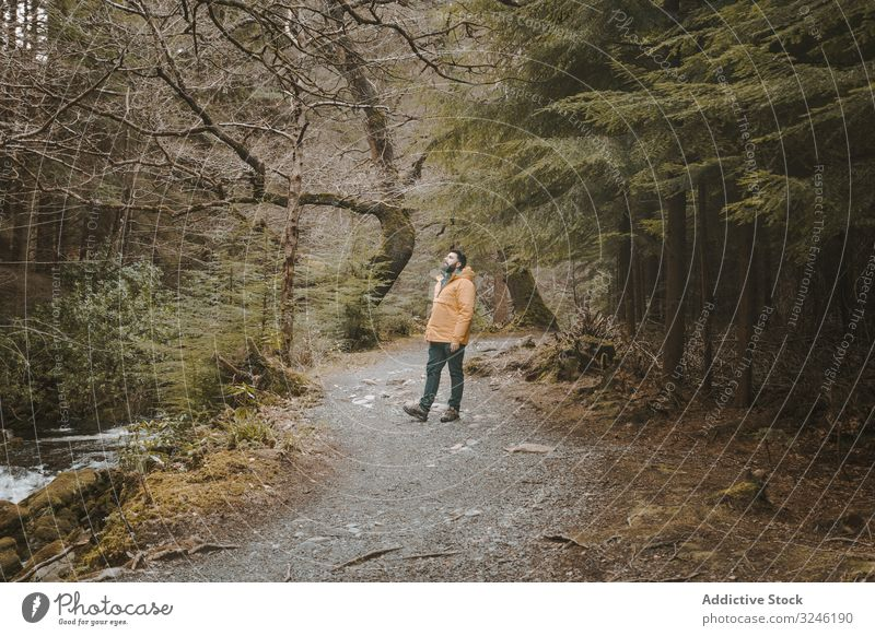 Tourist walking on footpath in forest park man bridge stone tollymore footbridge antique old ireland tree male bryansford newcastle active nature landscape