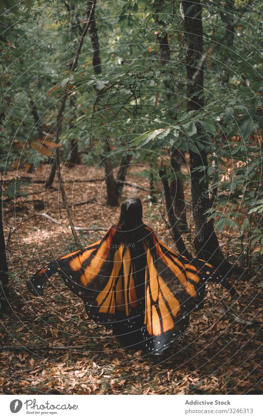 Woman in butterfly costume in forest woman dance wing cape tree nature hill female tender elegance graceful bug insect imitation lush foliage slope apparel