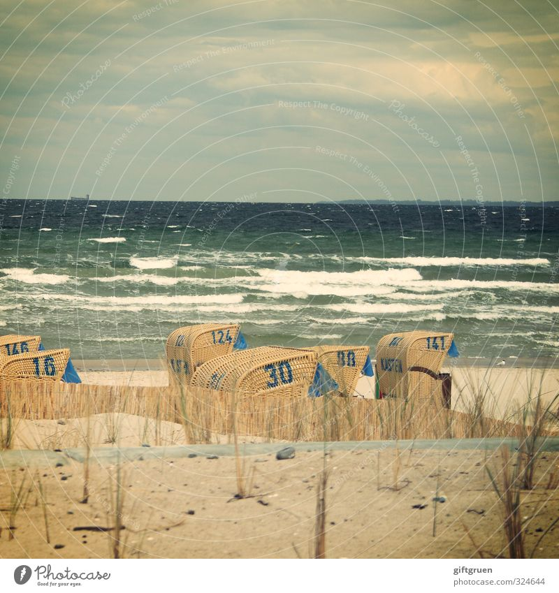 Sky Nature Vacation & Travel Water Plant Ocean Landscape Clouds Beach Environment Grass Coast Sand Horizon Waves Wind