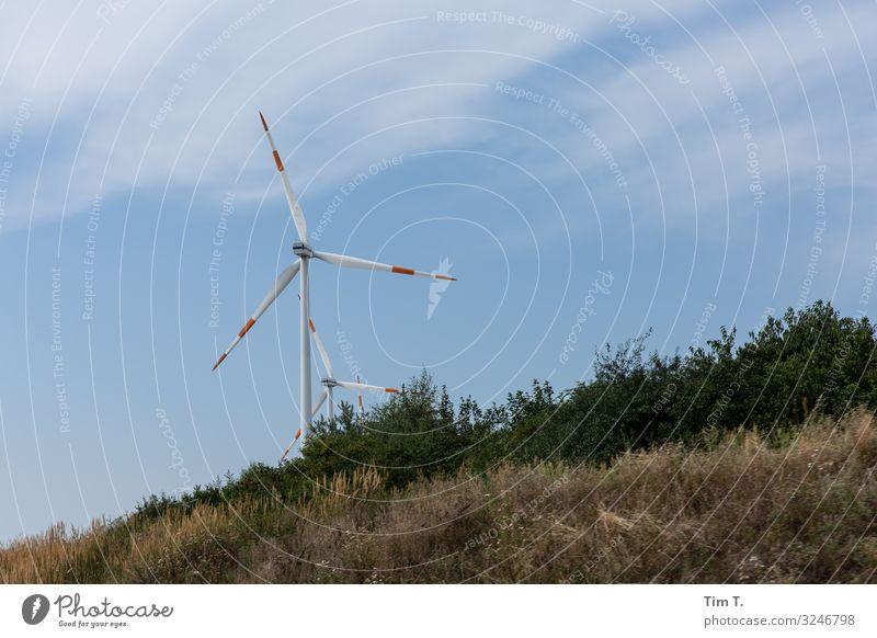 wind Technology Energy industry Renewable energy Wind energy plant Energy crisis Planning Colour photo Exterior shot Deserted Day Upward