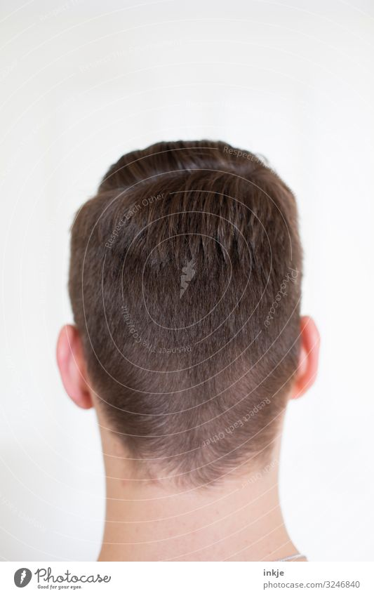 back of the head Style Masculine Young man Youth (Young adults) Head Hair and hairstyles 1 Human being 13 - 18 years 18 - 30 years Adults Short-haired Authentic
