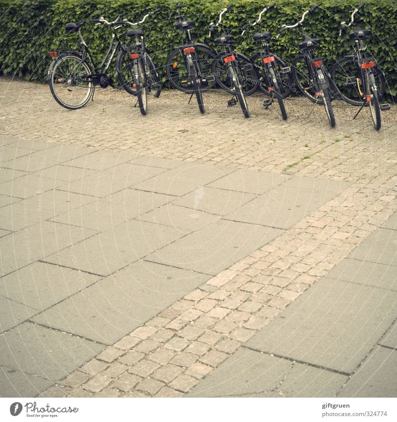 /\\\\\\ Means of transport Passenger traffic Cycling Street Bicycle Driving Parking lot Hedge Pavement Row Arrangement Side by side Structures and shapes Rent