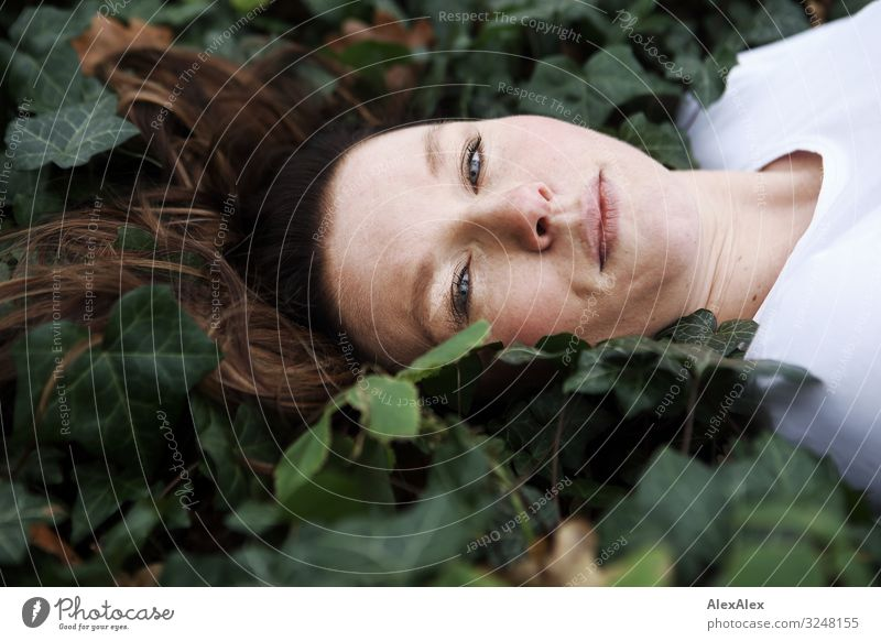 Portrait of a young woman in ivy Style Joy Beautiful Well-being Relaxation Young woman Youth (Young adults) Adults Face Freckles 30 - 45 years Nature Autumn Ivy