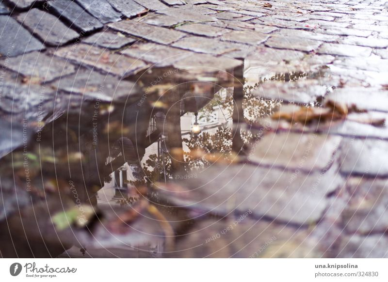 puddle Bad weather Rain Vienna Downtown Old town hundred water Transport Traffic infrastructure Road traffic Street Lanes & trails Broken Wet Town Cobblestones