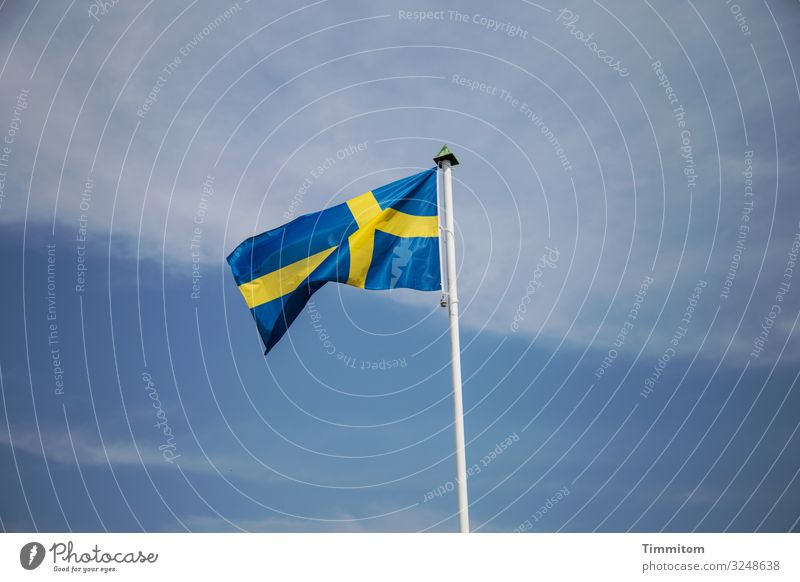 Swedish flag Vacation & Travel Tourism Sky Clouds Beautiful weather Flagpole Wood Line Simple Blue Yellow Black Emotions Blow Sweden Colour photo Exterior shot