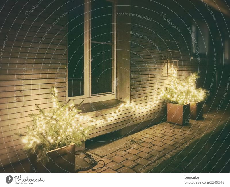 light therapy House (Residential Structure) Detached house Facade Garden Window Kitsch Problem solving Luxury Perspective Living or residing Winter