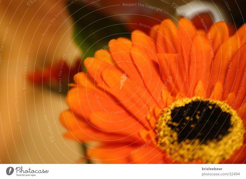 Flower Orange Cloth Statue False Placed Marigold Silk flower