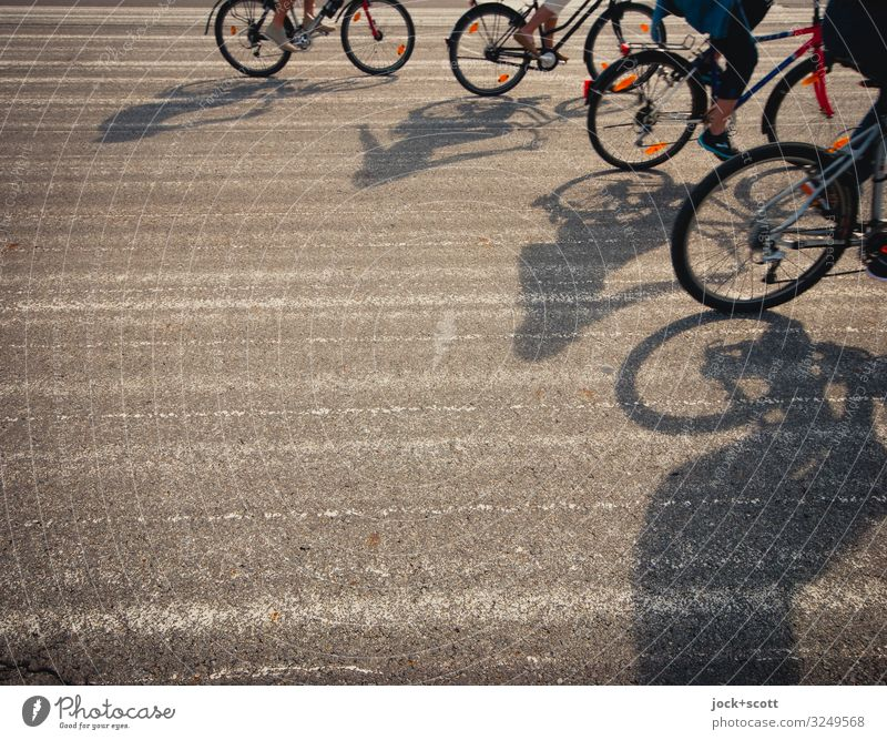Four friends on tour Leisure and hobbies Cycling Friendship 4 Human being Beautiful weather Tourist Attraction Runway Driving Long Warmth Gray Emotions Moody