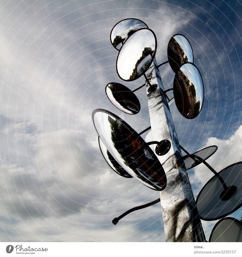 Sky Clouds Wood Life Art Moody Design Communicate Culture Esthetic Creativity Beautiful weather Tall Idea Curiosity Discover