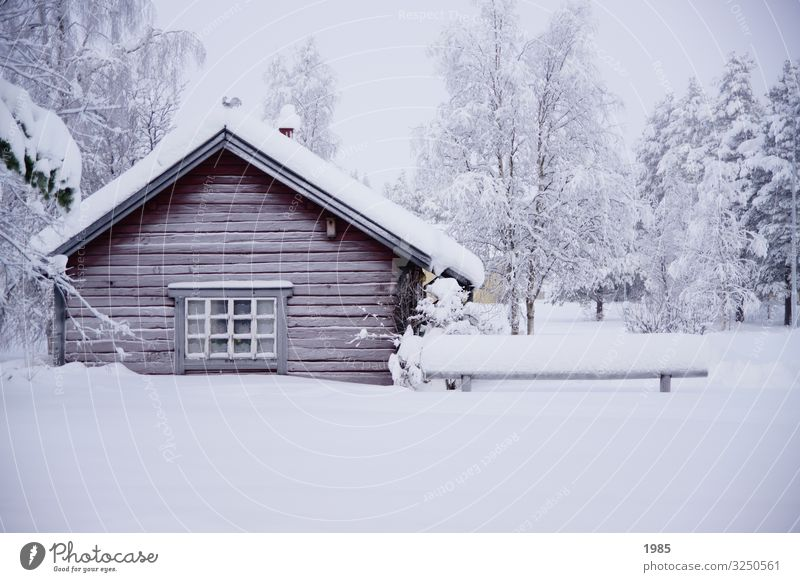 Snow-covered hut Winter Winter vacation House (Residential Structure) Nature Ice Frost Sweden Lapland Village Deserted Wood Glass Freeze To enjoy