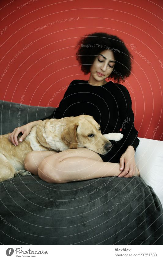 Woman and Labrador on an armchair in front of a red wall Style Joy Beautiful Harmonious Living or residing Flat (apartment) Room Young woman
