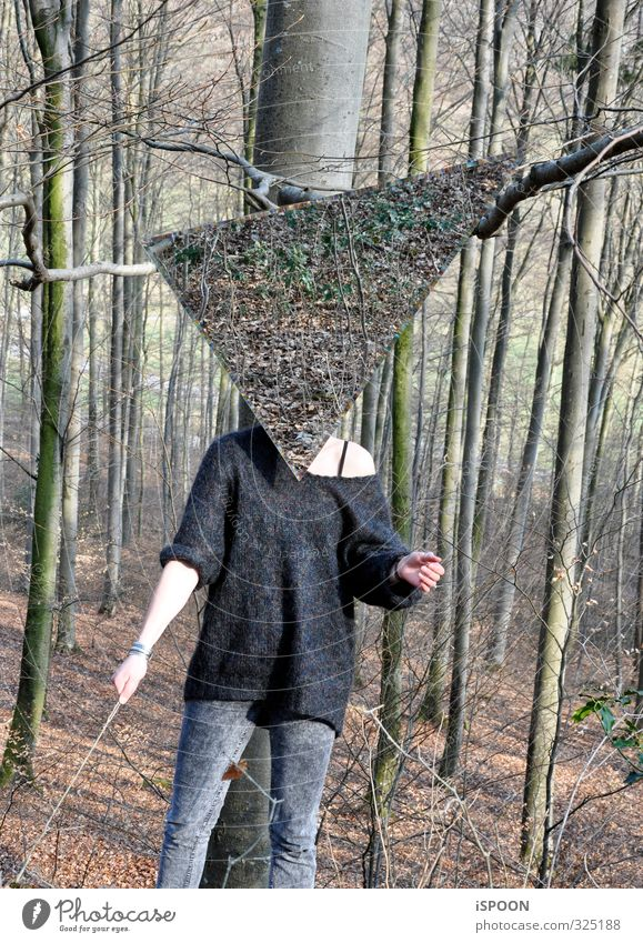 headless Feminine Young woman Youth (Young adults) Woman Adults Body Hand Stomach Legs 1 Human being 18 - 30 years Nature Tree Forest Sweater Esthetic