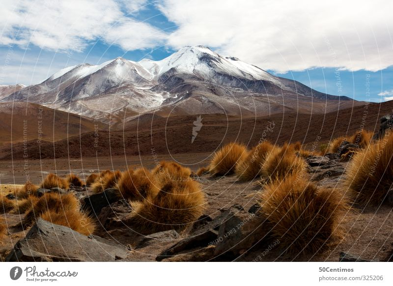 The Andes in Bolivia Vacation & Travel Winter Snow Mountain Hiking Nature Landscape Sky Clouds Beautiful weather Ice Frost Plant Bushes Might Dangerous