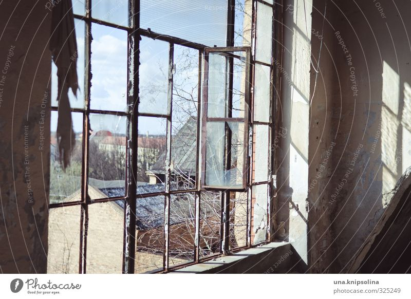apartment with view Environment forest Lausitz forest Outskirts House (Residential Structure) Ruin Building Window Old Dirty Broken Town Decline Past Transience