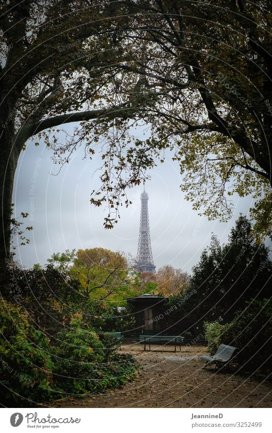 ...and then I saw the Eiffel Tower Tourism City trip Autumn Work of art Architecture Paris France Capital city Landmark Park Park bench Tree Discover Looking