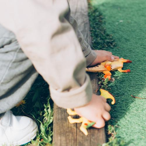 Dinosaurs sleeping Child Human being Hand Joy Grass Boy (child) Playing School Park Growth Infancy Ground Intellect Toys Doll Playground