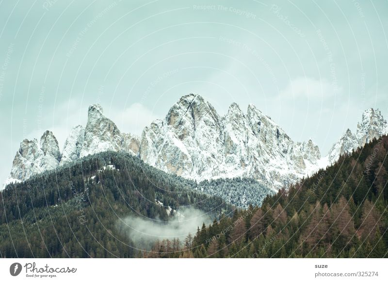 The Mountain Spirit Environment Nature Landscape Sky Clouds Climate Weather Meadow Forest Alps Peak Snowcapped peak Exceptional Fantastic Large Cold Loneliness