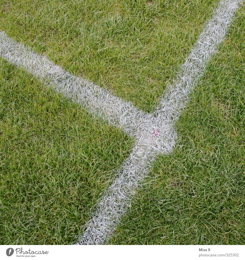 Green Sports Grass Playing Line Signs and labeling Grass surface Corner Football pitch Ball sports Sporting Complex Center line Marker line