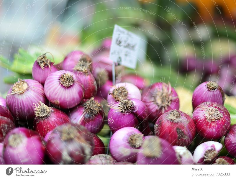 onions Food Vegetable Nutrition Organic produce Vegetarian diet Fresh Healthy Delicious Tangy Onion red onions Sell Harvest Farmer's market Vegetable market